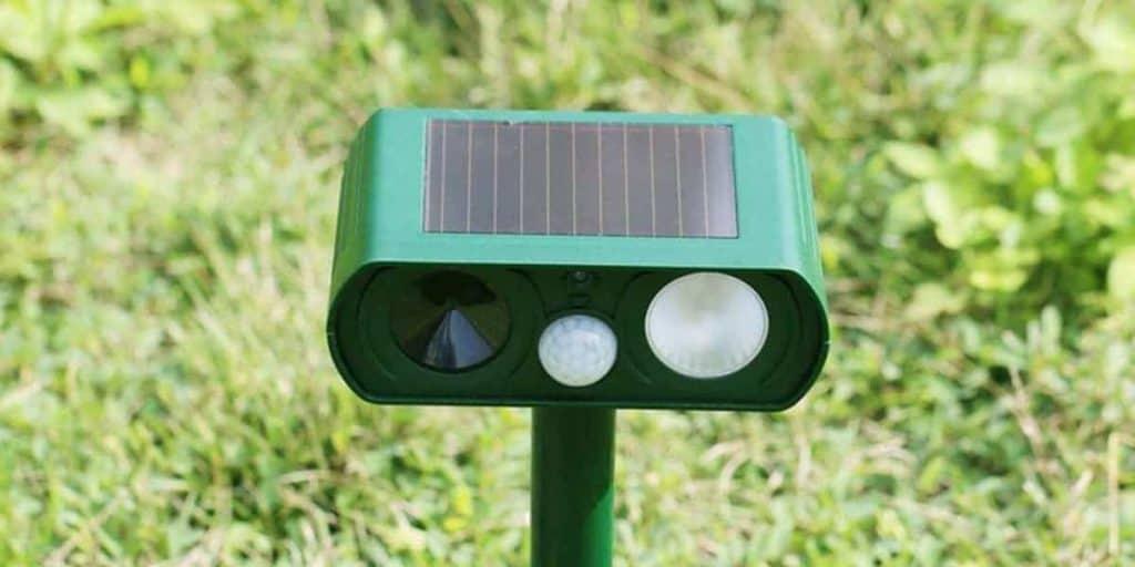 Best Solar Animal Repeller
